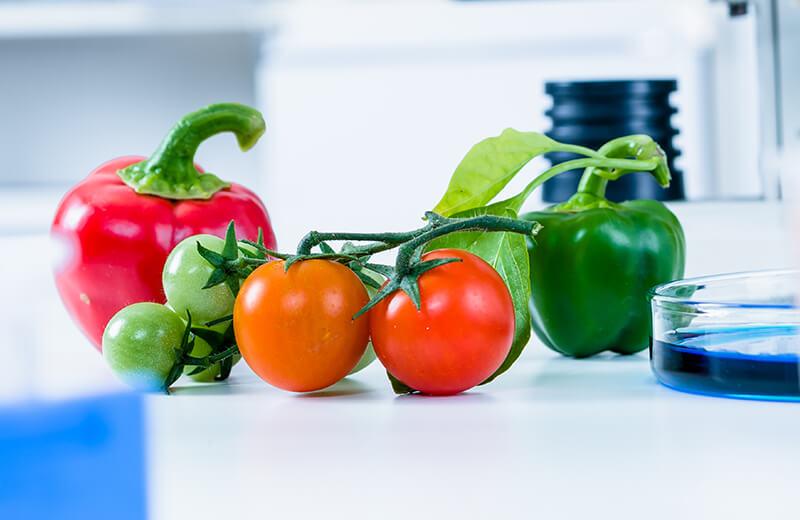 食品・環境検査、培養基材